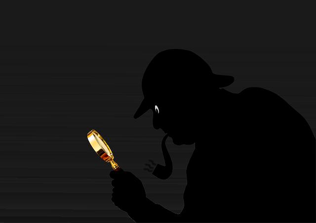 vyšetřovatel případu