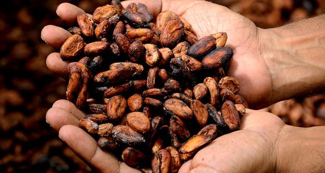 kakaová drť